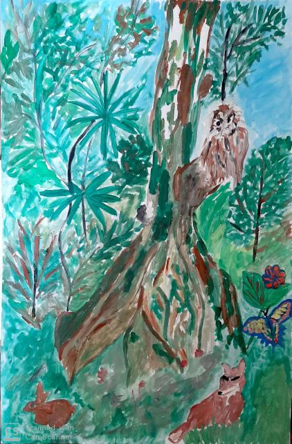 David Alexandru - Pădurea speranței