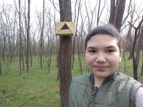 Druță Alina, Drăgănești