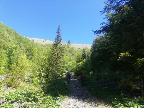 Fig. 4 - Porțiunea de traseu pe poteca pietroasă pe Valea Rea