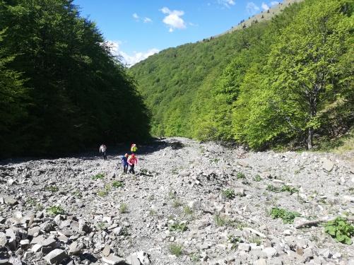 Fig. 5 - Valea Rea în zona de obârșie. Tot spațiul este ocupat de materiaale provenite din eroziunea torențială