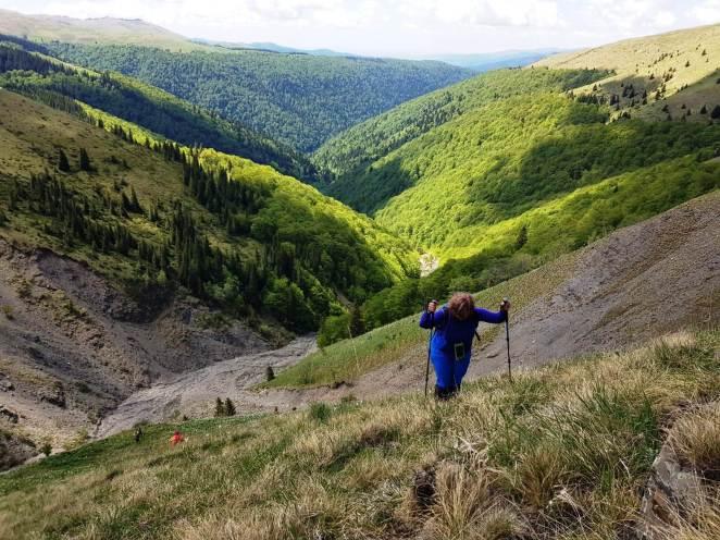 Fig. 9 - În urcuș către Culmea Cumpătu. Valea Rea rămâne mult mai jos